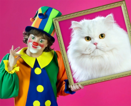 Цена билета театра кошек концерт 25 17 купить билеты