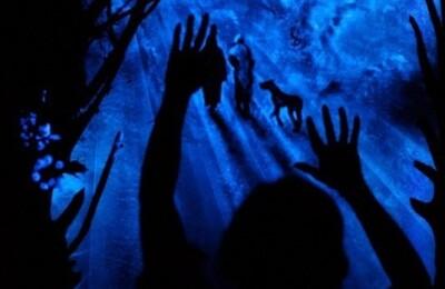 """Ночная театрализованная экскурсия. Ночь третья """"За час до полуночи"""""""