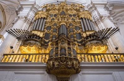 """""""700 лет органной музыки"""" Даниэль Сальвадор (орган, Испания)"""