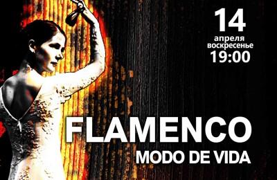 Flamenco Modo De Vida