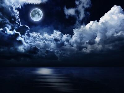 Аппассионата и Лунная соната. Гайдн, Моцарт, Бетховен