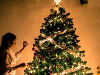 Ночь перед Рождеством в Музее музыки
