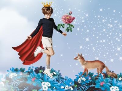 Путешествие Маленького принца