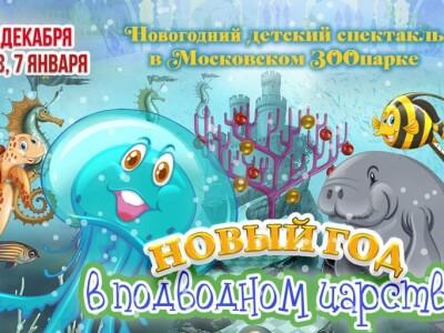 Новый год в подводном царстве. Новогодний детский спектакль в Московском ЗООпарке
