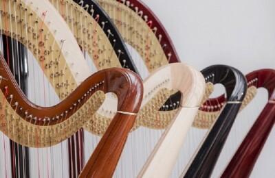 Благотоворительный концерт «Юные арфисты - родному Дому»