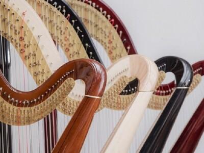 Благотворительный концерт «Юные арфисты - родному Дому»
