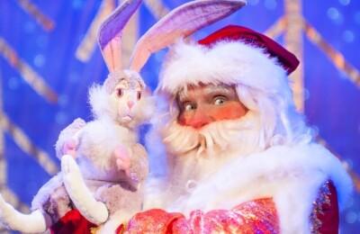 """Новогоднее поздравление и спектакль """"Дед Мороз"""""""